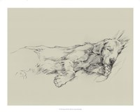Dog Days III Fine Art Print