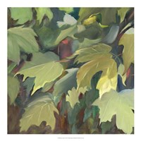 Leaf Array I Fine Art Print