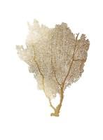 Gold Foil Sea Fan I Fine Art Print