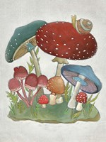 Mushroom Collection I Framed Print