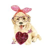 Valentine Puppy IV Framed Print