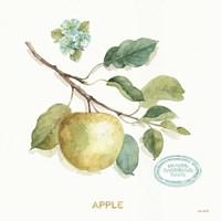 My Greenhouse Fruit IV Fine Art Print
