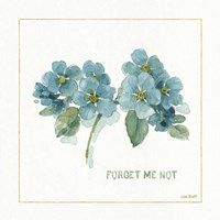 My Greenhouse Forget Me Not Fine Art Print