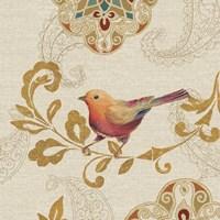 Bird Rainbow Orange Framed Print