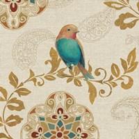 Bird Rainbow Teal Fine Art Print