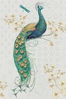 Ornate Peacock IXA Fine Art Print