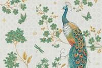 Ornate Peacock IV Master Framed Print