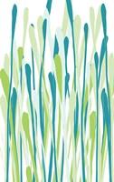 Grasses II Fine Art Print