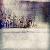 Winter Trees Fine Art Print