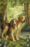 Beagles And Duck Fine Art Print