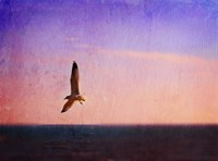 Let Your Spirit Soar Fine Art Print