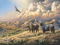 Under Wild Skies Fine Art Print