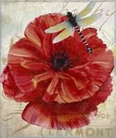 Le Pavot Dragonfly Fine Art Print