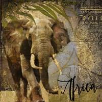 Taste Of Africa III Fine Art Print
