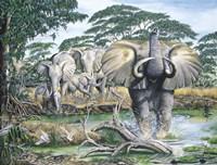 Unrest On The Serengeti Fine Art Print