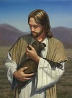 The Lost Lamb Fine Art Print