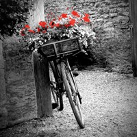 Flower Bike Square Fine Art Print