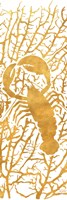 Sealife on Gold II Fine Art Print