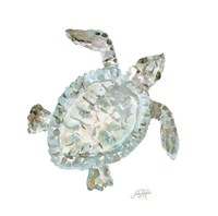 Neutral Turtle I Fine Art Print