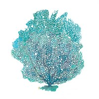 Teal Coral on White I Fine Art Print
