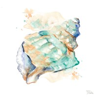 Blue and Green Shell Square Fine Art Print