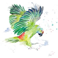 Amazon Parrot I Fine Art Print