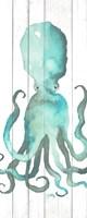 Octopus on Wood Plank Fine Art Print