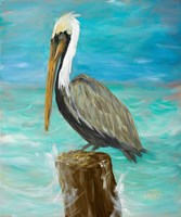 Single Pelican on Post Framed Print
