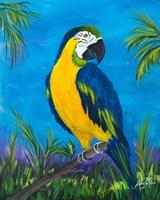 Island Birds II Fine Art Print
