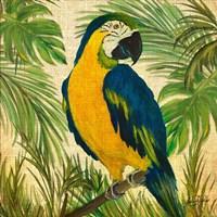 Island Birds Square on Burlap II Fine Art Print