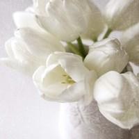 Vanishing in the White Elegance Square Fine Art Print