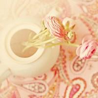 Teapot with Peonies Fine Art Print