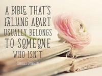 Bible Quote Fine Art Print