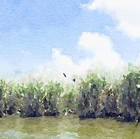 Watercolor Black Hammock Lake Fine Art Print