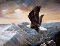 Eagle's Lair Fine Art Print