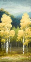 Birchwood II Fine Art Print