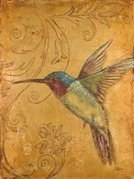 Golden Hummingbird II Fine Art Print
