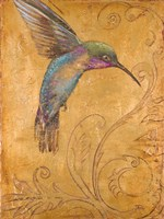 Golden Hummingbird I Fine Art Print