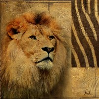 Elegant Safari II (Lion) Fine Art Print