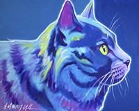 Cat - Blue Boy Fine Art Print
