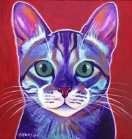 Cat - Surprise Fine Art Print