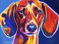 Dachshund - Bubbs Fine Art Print