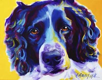 English Springer Spaniel Emma Fine Art Print