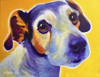 Jack Russell - Mudgee Fine Art Print