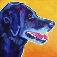 Kenobi Profile Fine Art Print