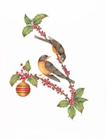 Robin Holly Day Fine Art Print