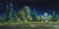 Fireflies Fine Art Print