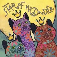 Cat 5 Fine Art Print