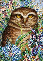 Burrowing Owl in Flowers Fine Art Print