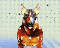 Bull Terrier Brown Oxide LX Fine Art Print